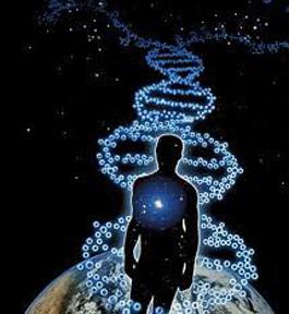 DNA-PATHWAY